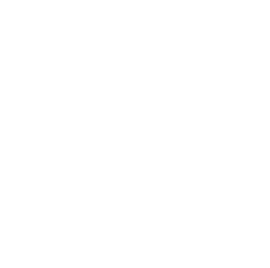 MEGATREND BUSINESS SOLUTIONS